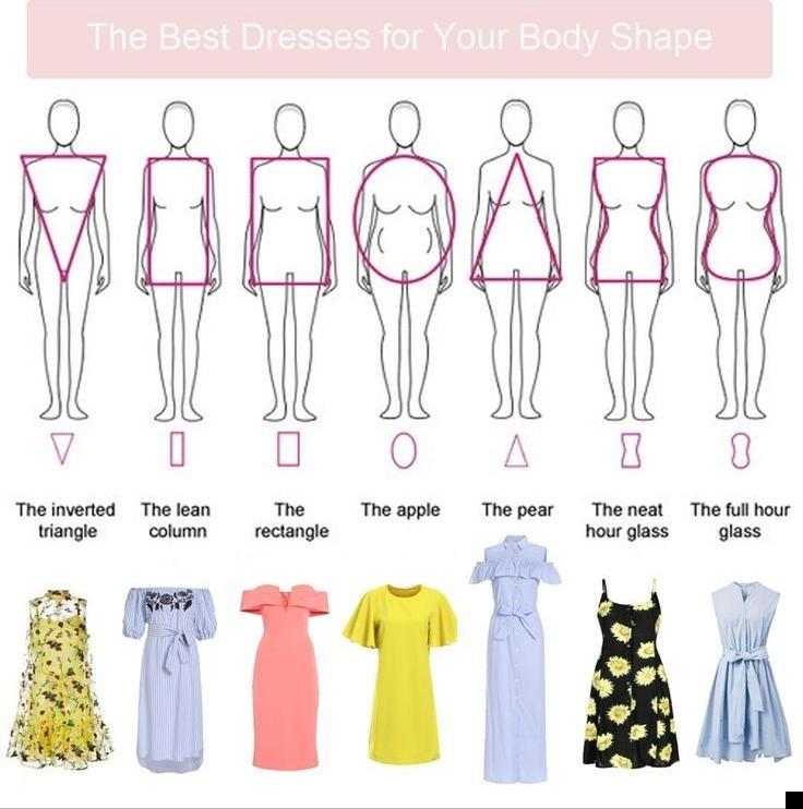 فرم های مختلف بدن